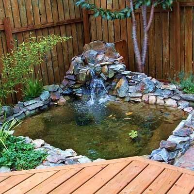 план как выстроит маленький пруд во дворе для декоративных рыб